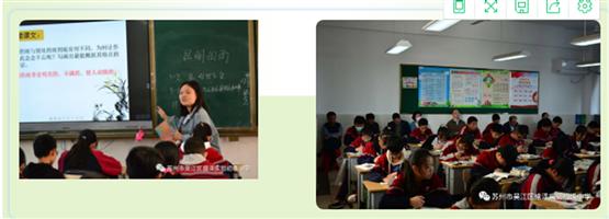 阶段考:区教研室对我校进行综合调研